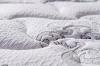 Анатомические матрасы люкс-класса от компании Sonata Mobel - Германия