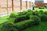 Хотите сад и газон лучше и красивее соседского?
