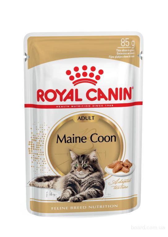 Бюджетный сухой корм для кошек.