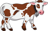 Куплю крупный рогатый скот (КРС, ВРХ) по Украине!