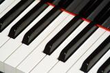 частные уроки игры на фортепиано киев