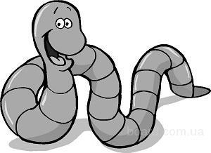 Куплю оптом мотыль, червей, опарыша, выползков