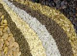 Семена чернушки, семена лука оптом, семена овощных культур