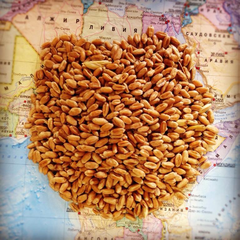 Підприємство здійснює закупівлю зернових