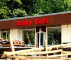 Незабываемый детский День Рождения в кафе «Kitty» в Харьковском зоопарке