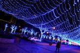 Новогоднее оформление фасадов зданий, ресторанов, витрин, офиса, торговых центров, магазина светодиодными гирляндами