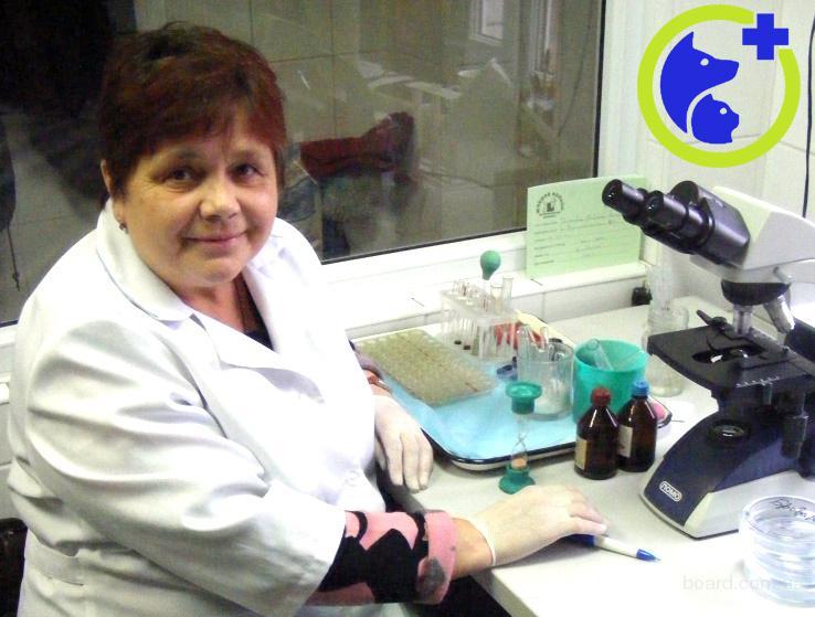 Лабораторные обследования животных (анализы)