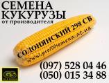 Семена кукурузы, гибрид Солонянский 298 СВ