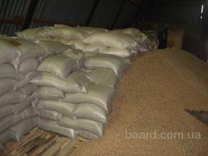 На постоянной основе закупаем отруби пшеничные.