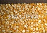 Услуги по сушке зерновых и бобовых культур