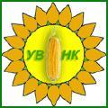 Високоякісні гібриди кукурудзи та соняшника угорської селекції