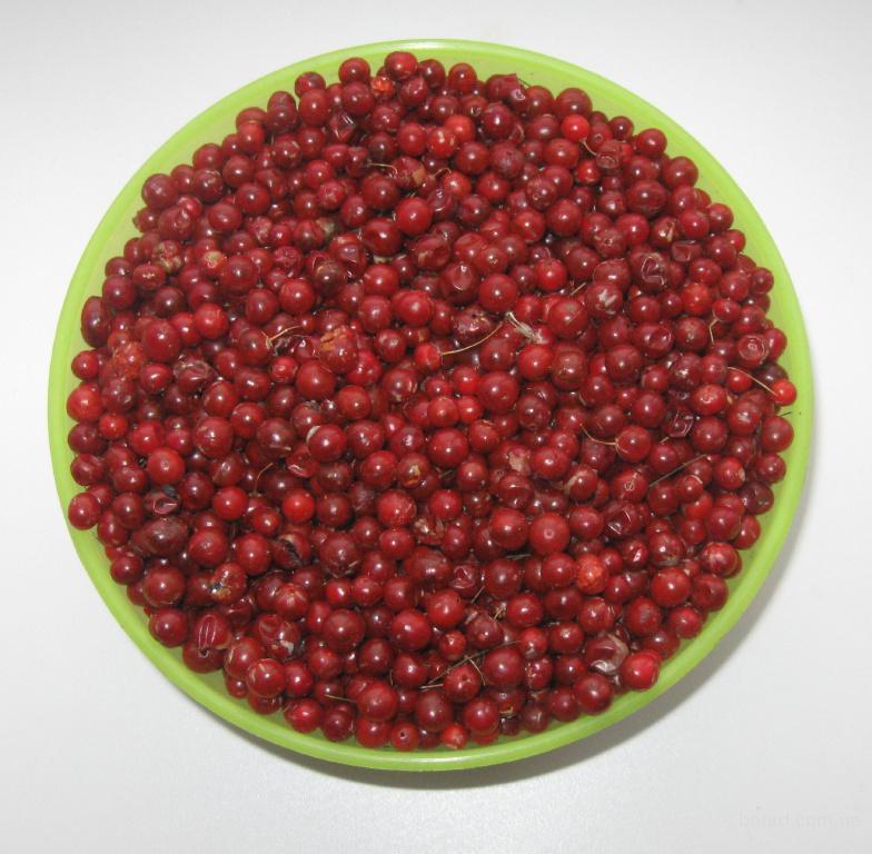 Плоды спаржи лекарственной. Asparagus of