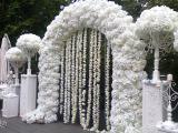 Свадебные арки (7 видов) Декор зала. Президиум молодоженов.