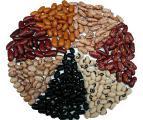 Оптовые продажи бобовых культур