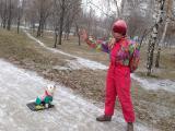 Дрессировка собак декоративных пород!Киев.