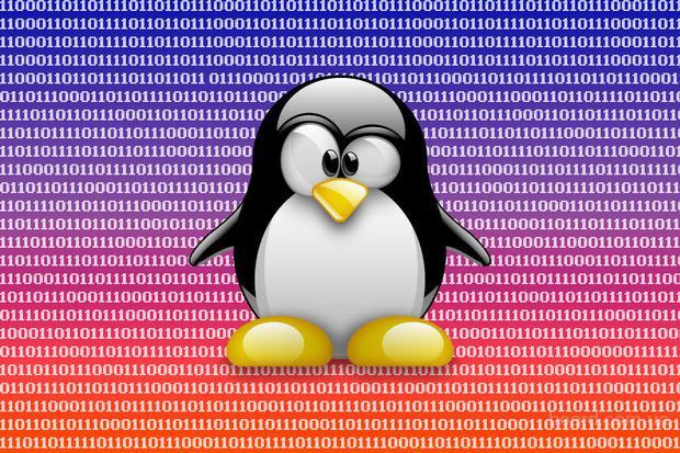 Курсы Linux (Ubuntu) для Вас!
