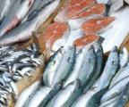 Рыба в ассортименте ( замороженная)