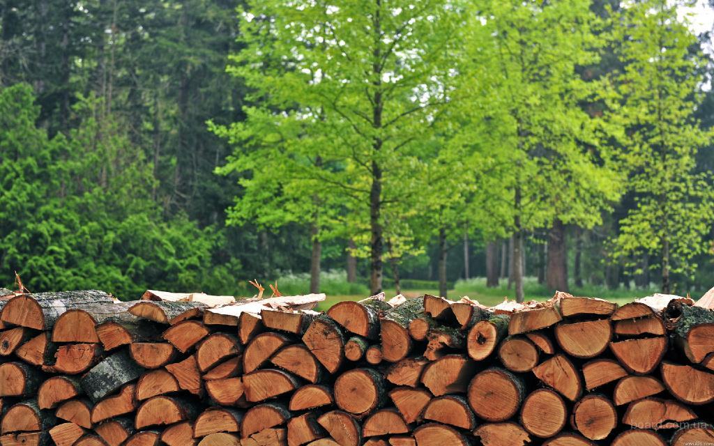 Продам дрова,( все сорта древесины в наличии), донецк, макеевка, доставка!