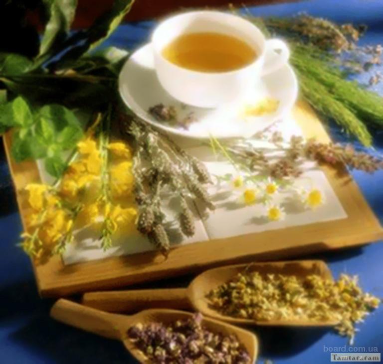 Лекарственные травы.Лікарські рослини.