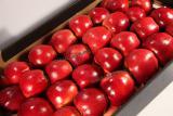 Яблоки Польша