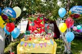 Организация детских дней рождений от агенства New Look