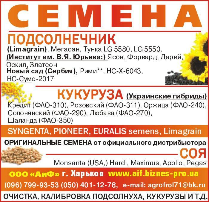Посевной материал раннего подсолнечника Оскил  (продам)