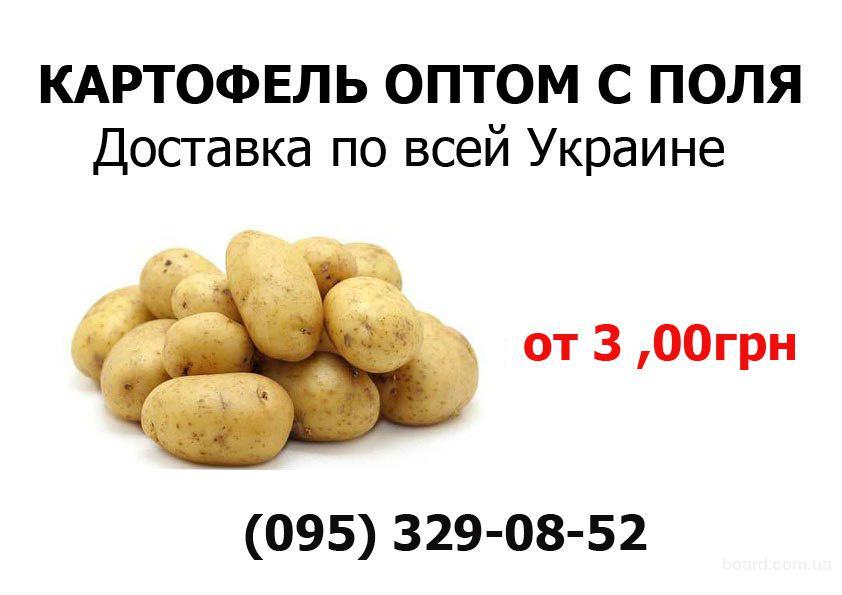 Компании  продукты питания оптовая продажа овощи фрукты