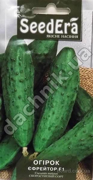 Семена огурцов с доставкой по всей Украине