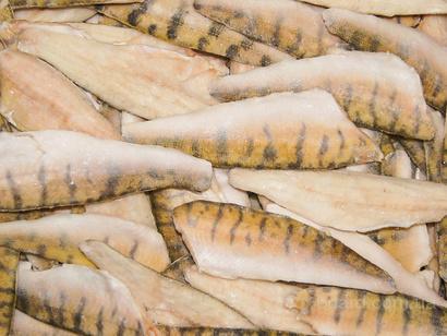 толстолобик живой цена за 1 кг