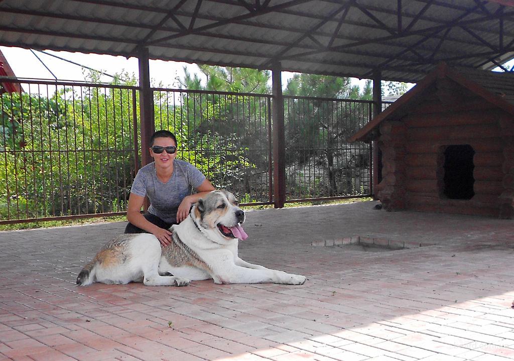 Гостиница для собак!Киев.