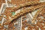 Кредит под залог недвижимости от Частного Инвестора
