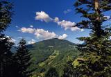 долина нарциссов туры из киева, закарпатье майские праздники недорого, тур карпаты на майские из киева