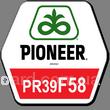 """Кукуруза ПР39Ф58 (ФАО 290) , """"Pioneer"""""""