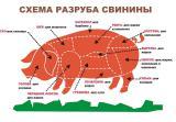Пропонуємо субпродукти яловичі та свинні