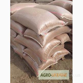 Продам пшеницу в мешках по 25 кг и 50 кг, Киевская обл.