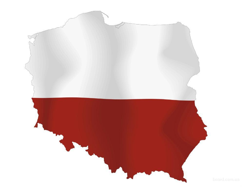 Перевод документов, презентаций, текстов на польский язык