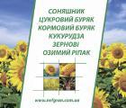 Пропонуємо насіневий матеріріал гібриду соняшника. Матадор