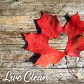 Органическая косметика Live Clean (Канада)