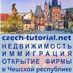 Юридические услуги по регистрации бизнеса и получении ПМЖ в Чехии