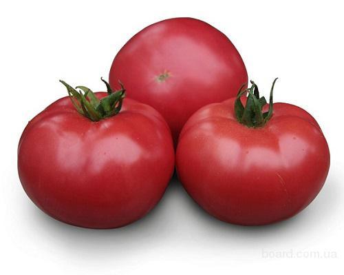 Семена розового томата KS 38 F1 (Китано)