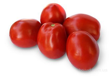 Семена томата KS 720 F1 (Китано)