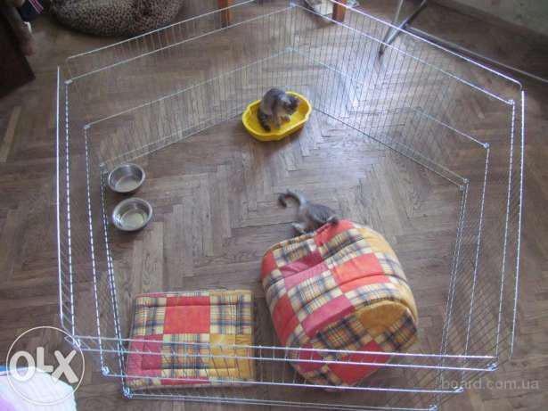 Переносной домашний вольер для собак (диаметр 170 см)