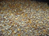 Отходы пшеницы