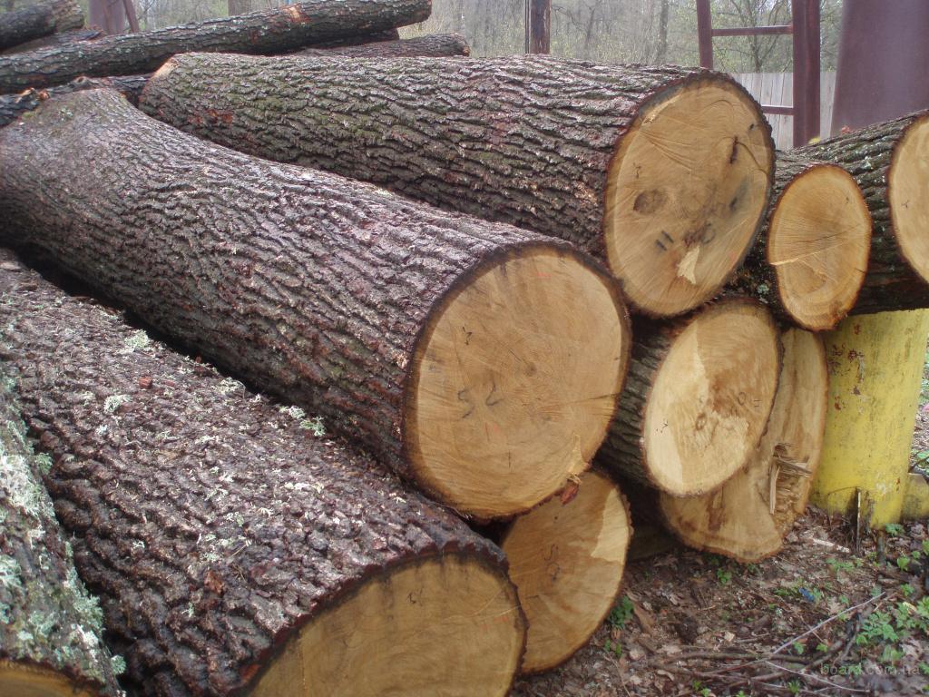 дрова дубовые, 25см