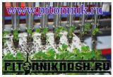 Оборудование для питомников, лесопитомников, цветочников, теплиц