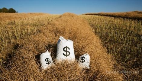 Гарантированный успех бизнеса - это сельское хозяйство.