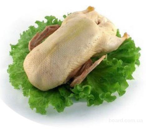 Продам мясные тушки утки Мулард