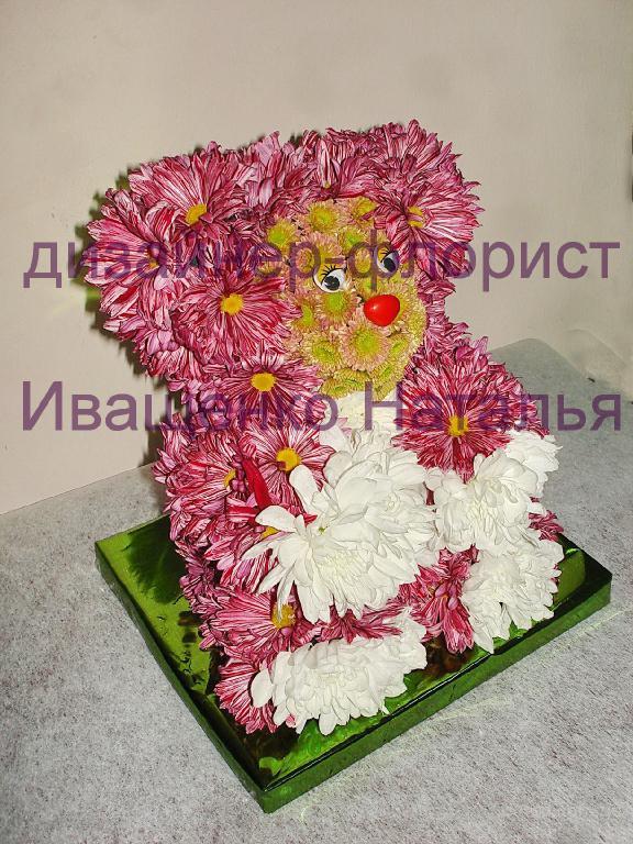 Мишка из живых цветов Киев.