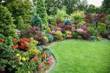Предлагаю услуги садовника и ландшафтного дизайнера