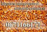 Куплю просроченный посевной материал: подсолнечника, кукурузы, сои, рапса!